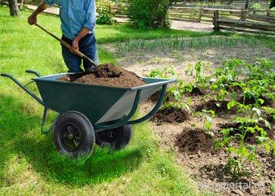 Какую садовую тележку выбрать лучше всего?