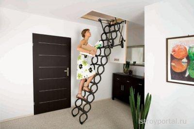 На чем остановиться при выборе водостоков и чердачных лестниц?